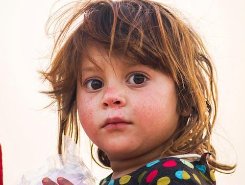 Free stock photo of child, children, closeup, everyday people