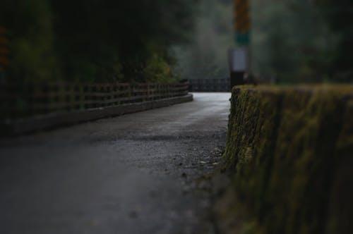 Ilmainen kuvapankkikuva tunnisteilla tie