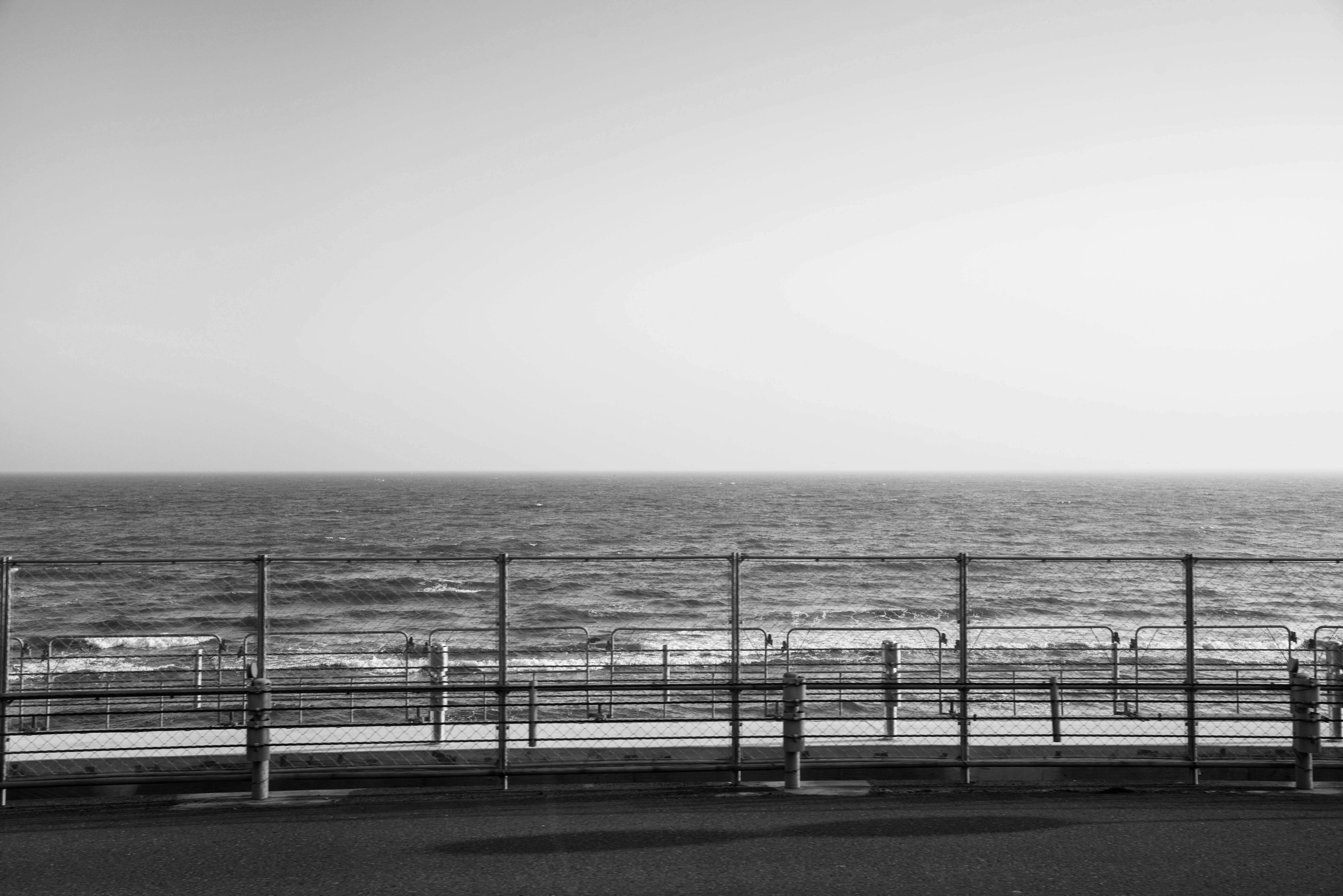 Grayscale Photography of Fence Beside Ocean