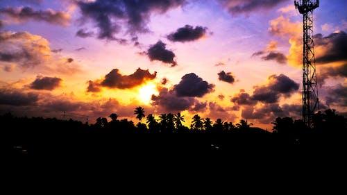 Fotos de stock gratuitas de arboles, cielo, colores, naturaleza