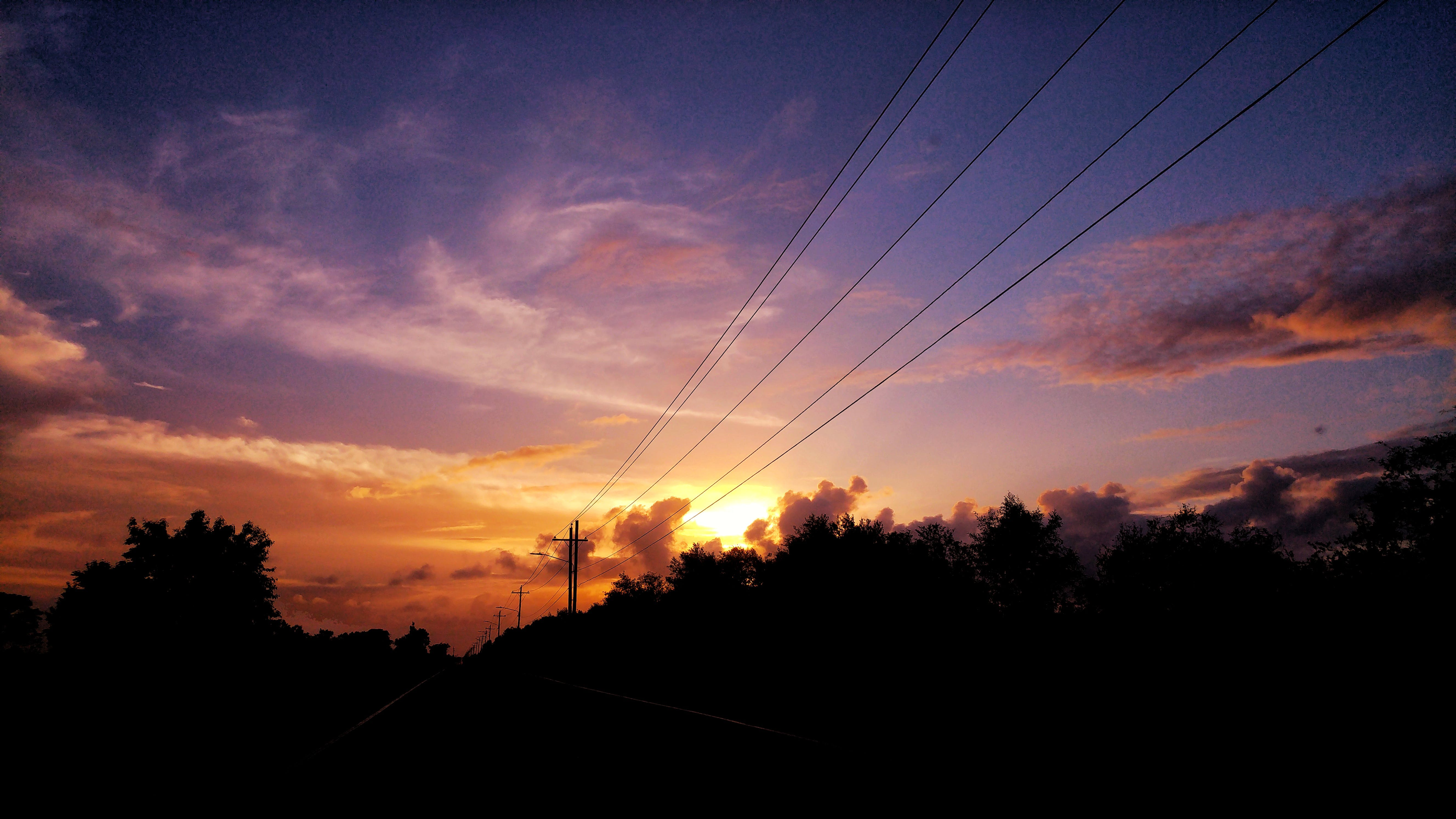 Silhouette of Trees and Cable Post during Golden Hour