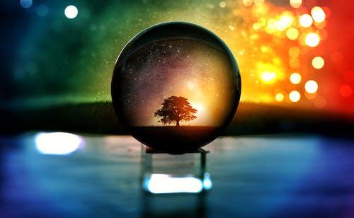 模糊, 樹, 水晶球, 漆黑 的 免費圖庫相片