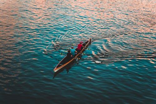 Kostenloses Stock Foto zu boot, kanu, menschen, paddel