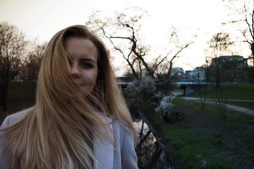 Photos gratuites de arbre, aube, brume, cheveux blonds