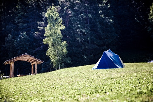 Blue and White Tent on Green Grass Field Near Green Tree