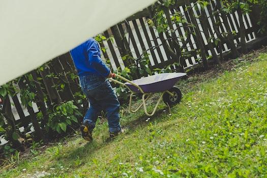 Free stock photo of playing, child, childhood, children