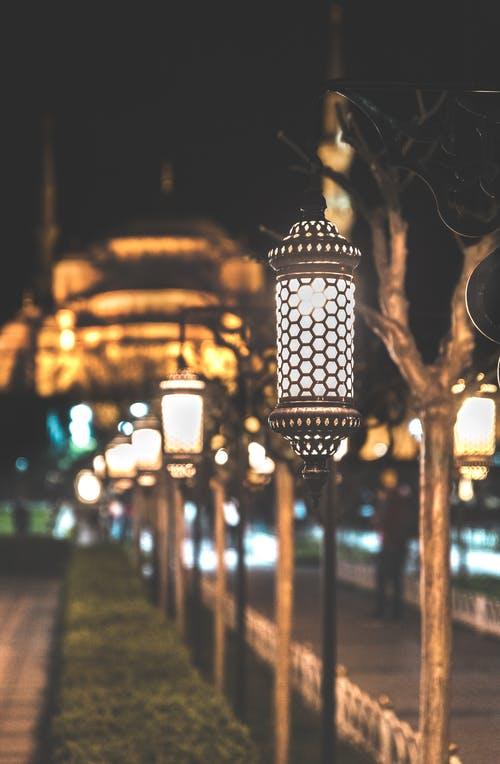 Photograph of Lined Post Lamps during Nightime