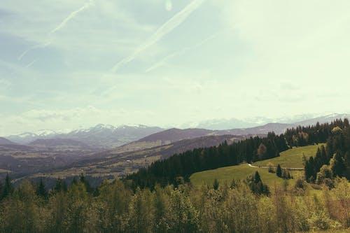 Photos gratuites de arbres, cailloux, chaîne de montagnes, ciel