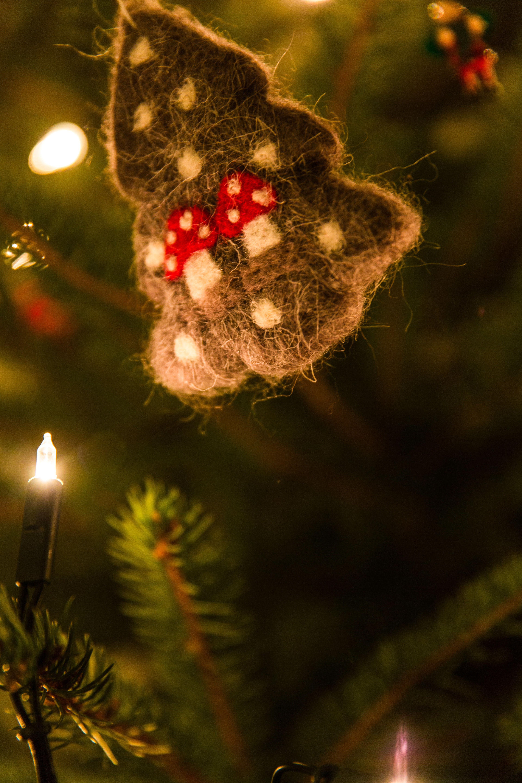 Gratis arkivbilde med jul, juledekorasjon, julelys, juletre