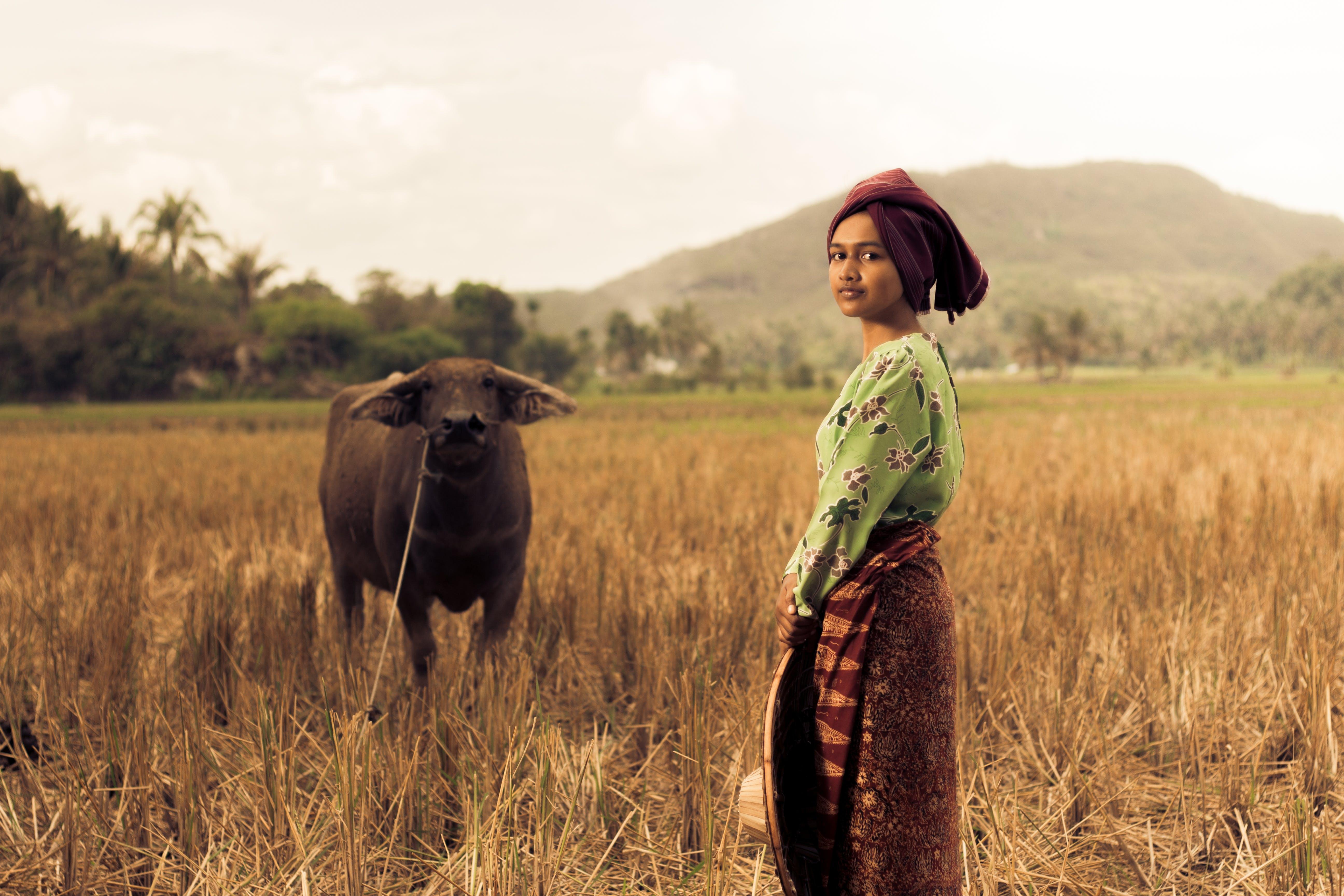 Woman Standing Near Black Water Buffalo at the Field