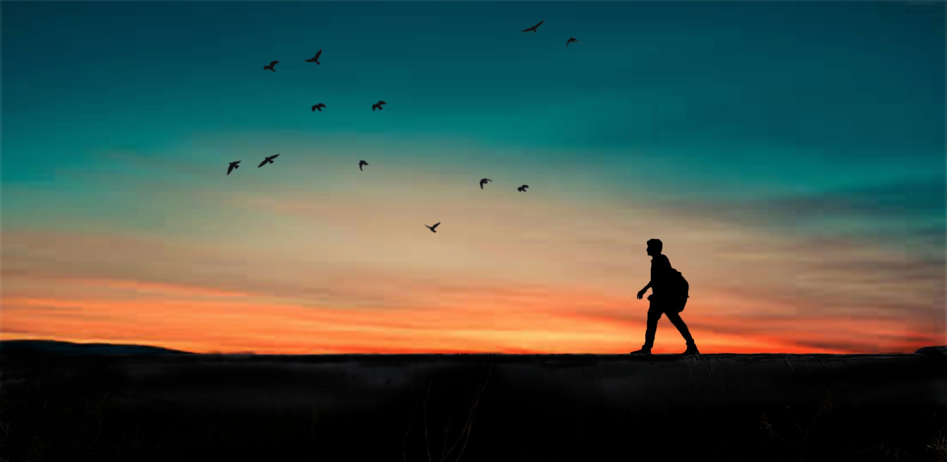 Silhouette of Person Walking