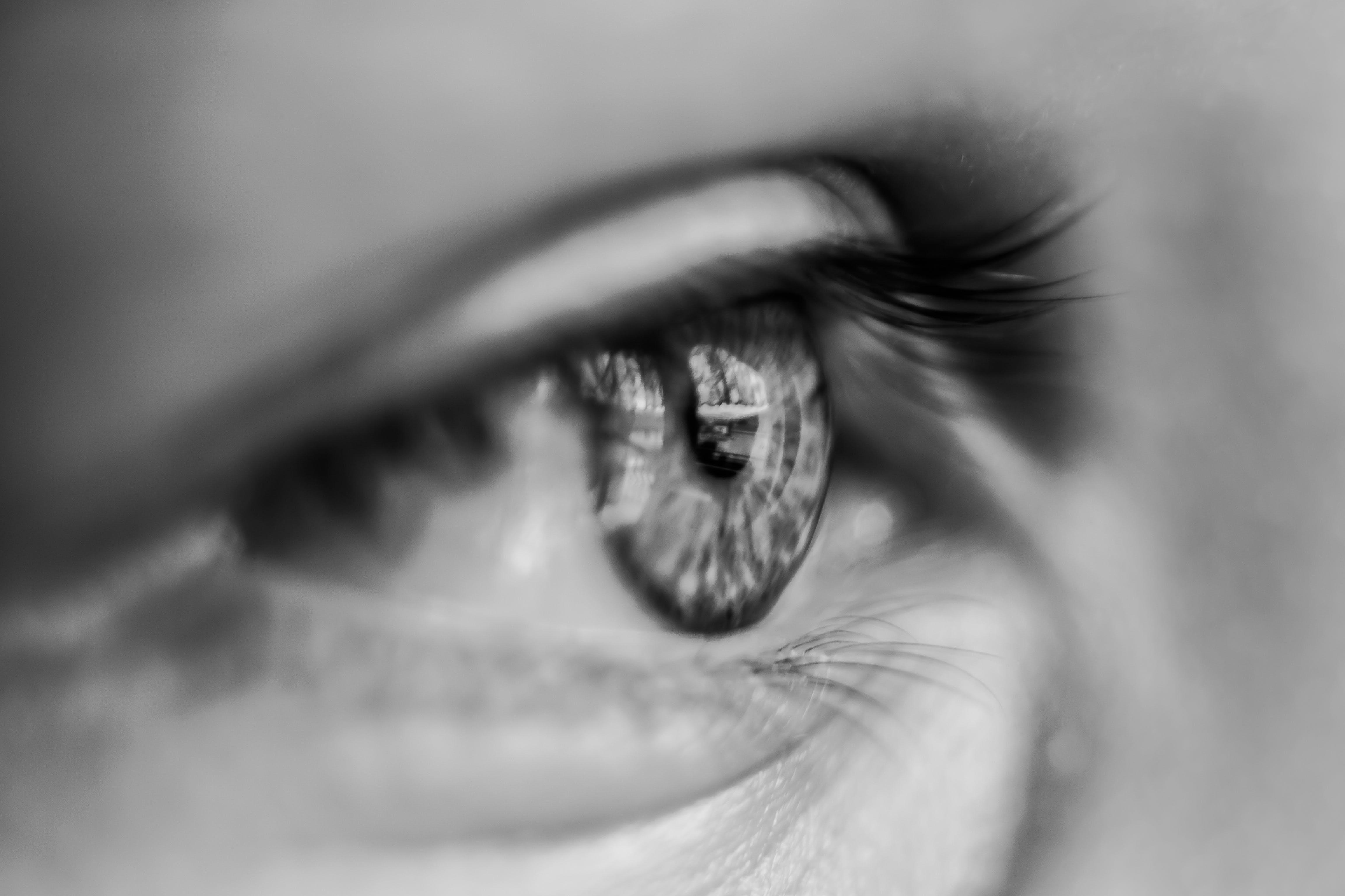 Grayscale Macro Photography of Person's Eye