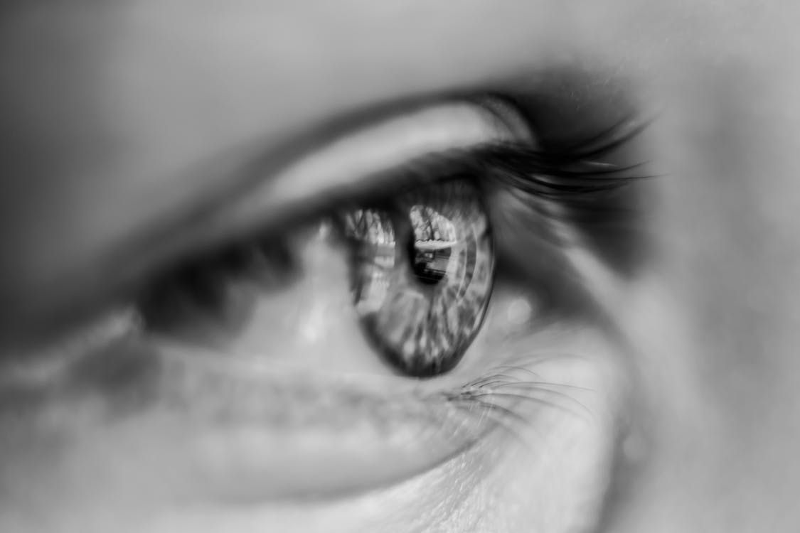 Grayscale Macro Photography of Person's Eye