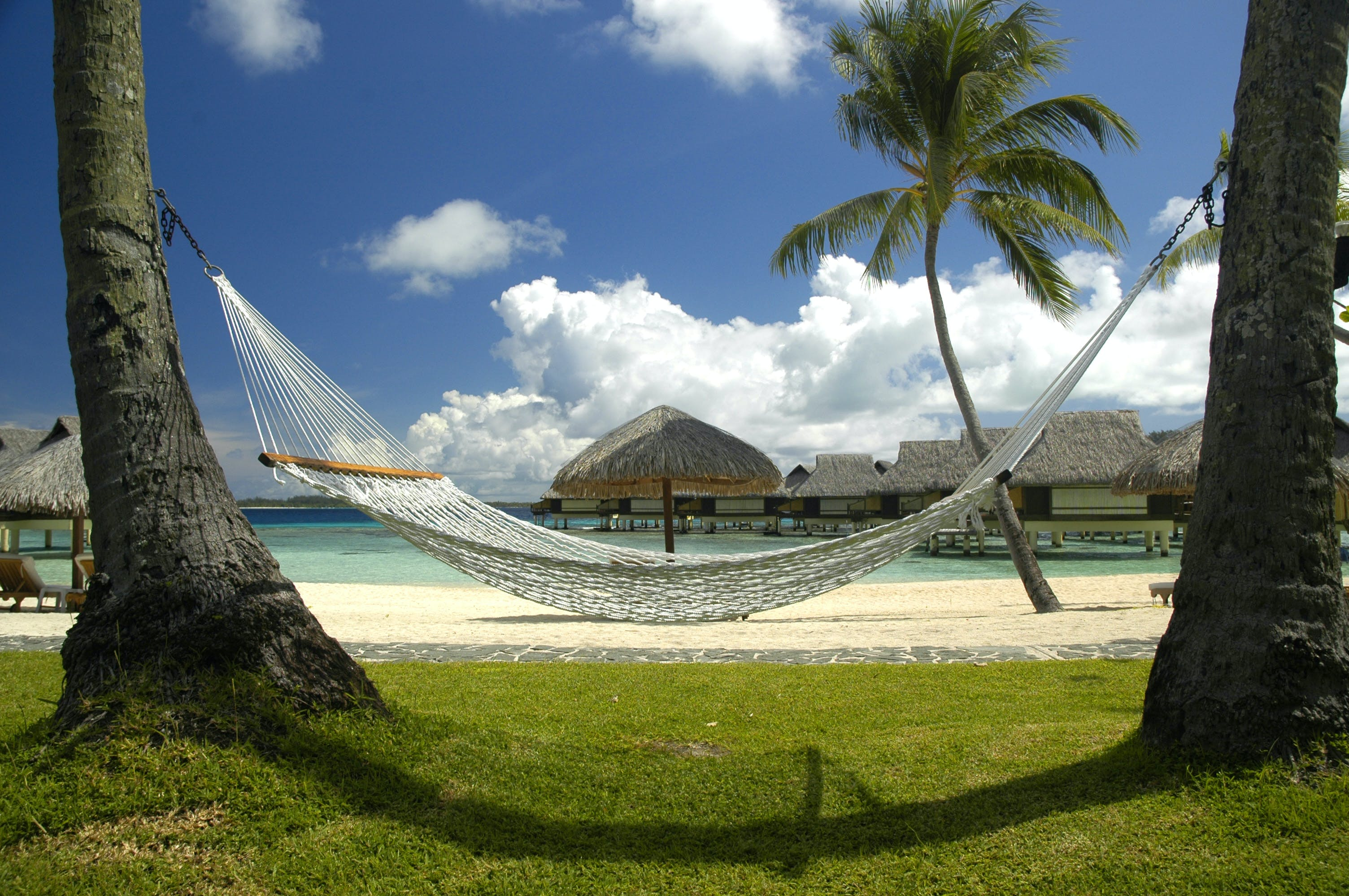 White Hammock on the Beach