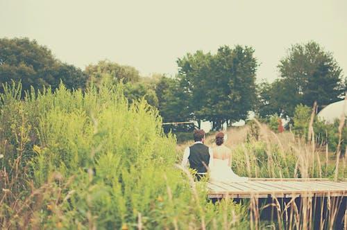 Foto d'estoc gratuïta de amor, arbres, boda, casat