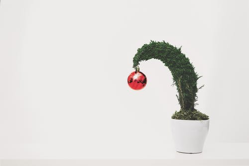 Darmowe zdjęcie z galerii z białe tło, bombka, bonsai, boże narodzenie