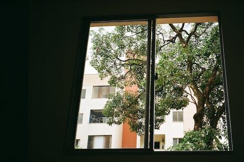 Fotobanka sbezplatnými fotkami na tému analógový, architektúra, balkón, budova