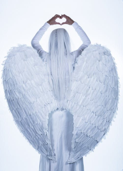 Základová fotografie zdarma na téma anděl, bílá, kostým, křídla