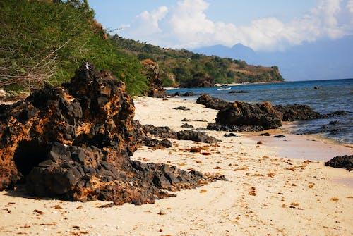Бесплатное стоковое фото с берег, вода, море, морская пена