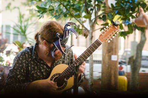 Základová fotografie zdarma na téma hudba, hudebník, kytara, píseň