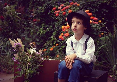 人, 休閒, 兒童, 可愛 的 免费素材照片