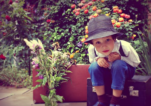 Free stock photo of boy, children, flowers, garden