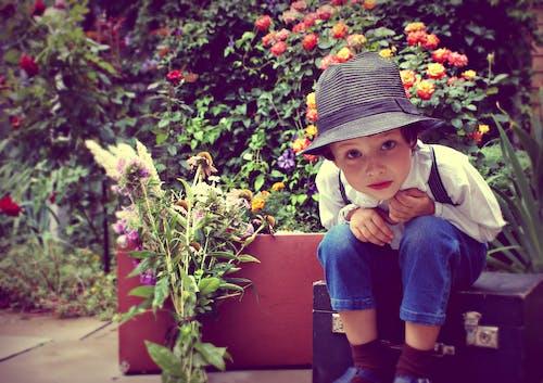 Ảnh lưu trữ miễn phí về bọn trẻ, con trai, hoa, hoa hồng
