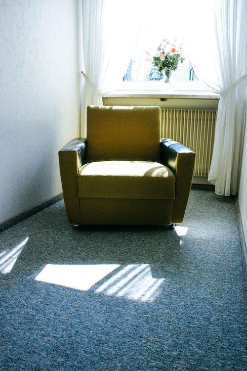 adentro, alfombra, apartamento
