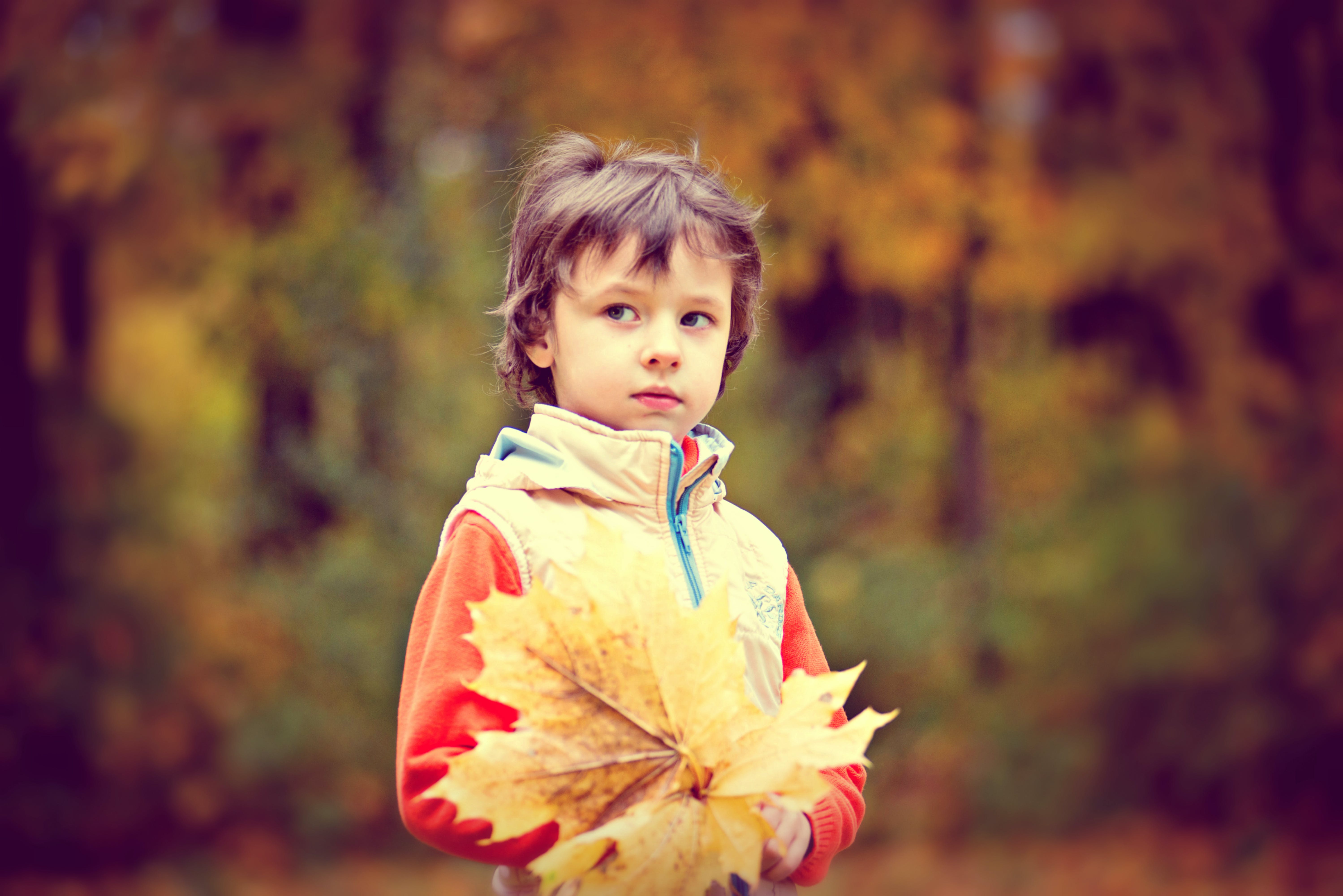 Boy Wearing White and Red Zip Jacket Holding Brown Maple Leaf