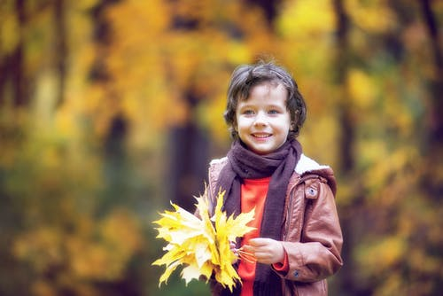 Free stock photo of autumn forest, boy, cap, children