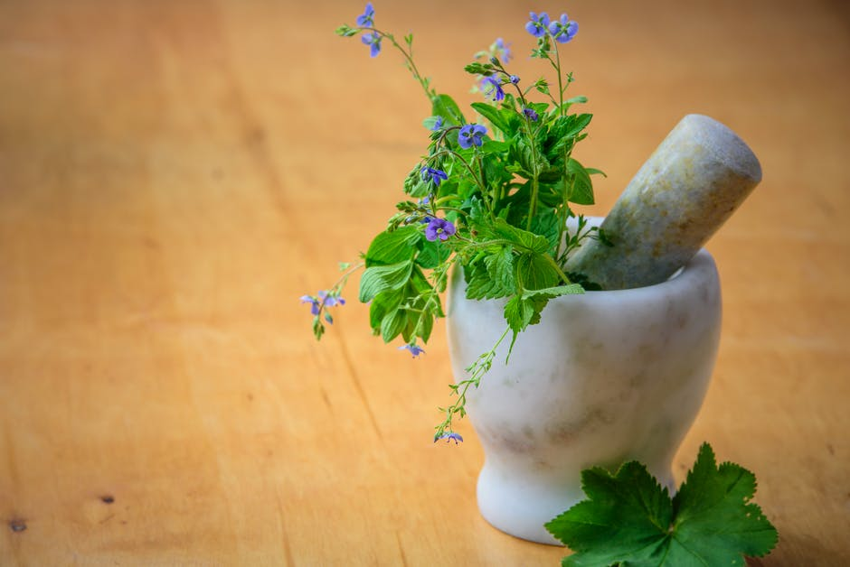 Natural Remedies — Discovering the Power of Plants in these Crazy Times