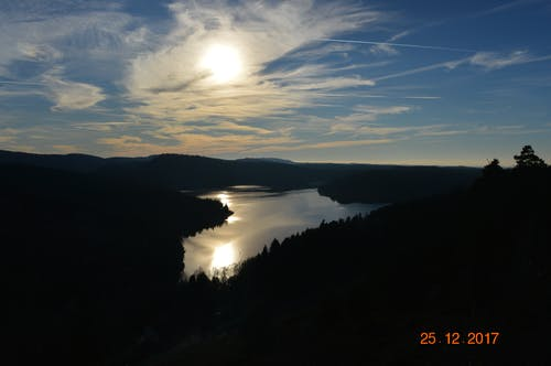 Foto stok gratis hutan, langit biru, matahari