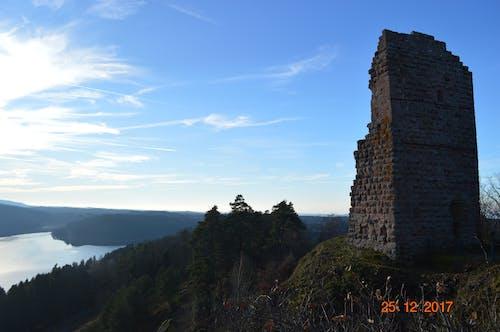 Foto profissional grátis de arruinado, céu azul, floresta, Nikon