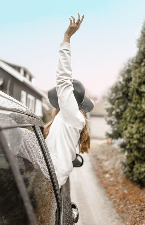 Immagine gratuita di adulto, albero, autista, auto