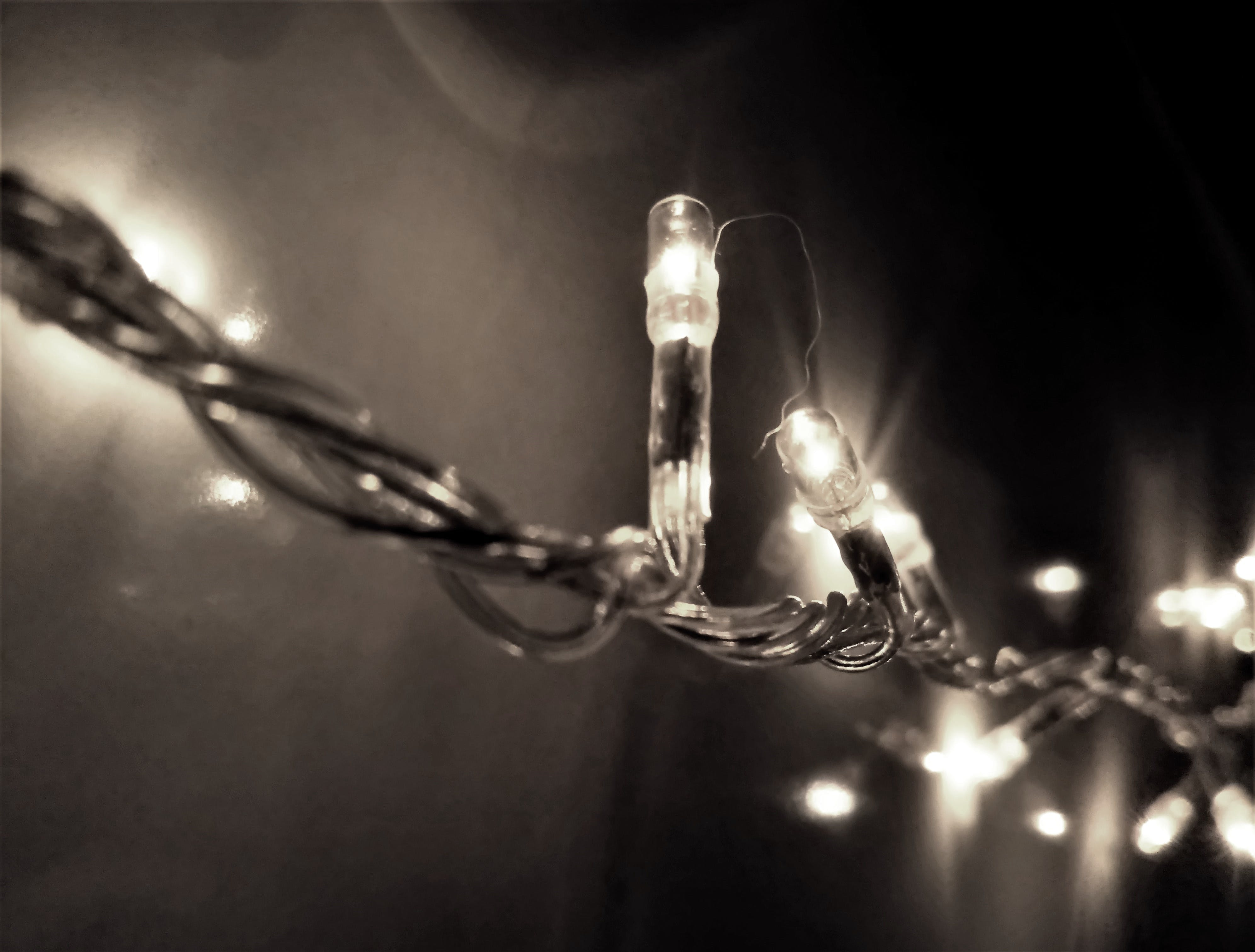 Selective Focus Photography of String Light