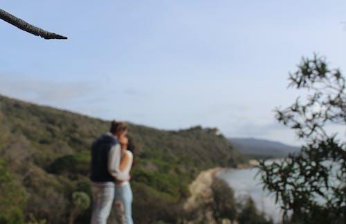 Gratis stockfoto met blauwe lucht, blurry achtergrond, bomen, dag