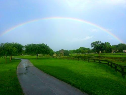 Immagine gratuita di arcobaleno, colori dell'arcobaleno, dopo la pioggia, pioggia