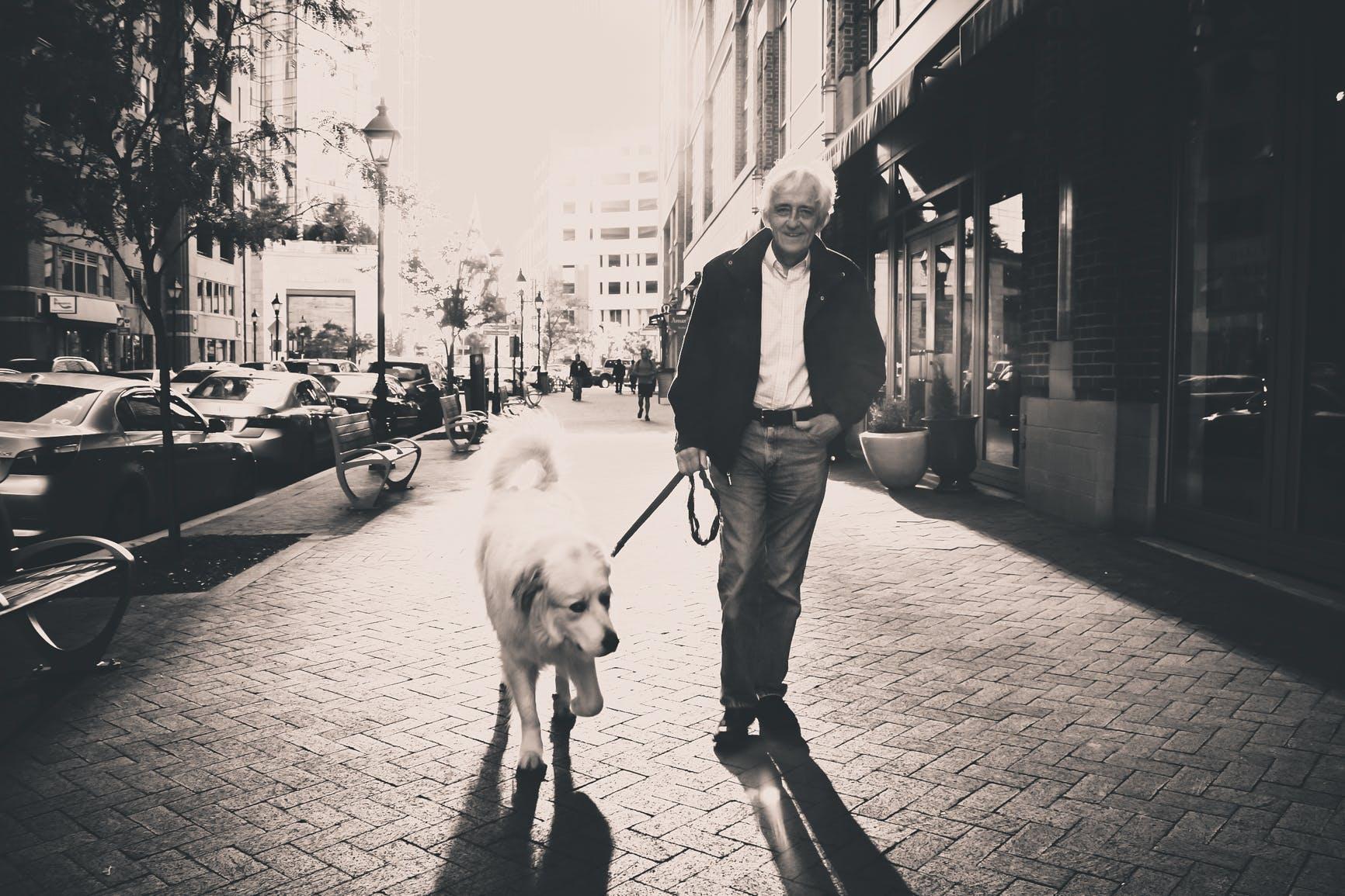 Man Walking With Golden Retriever