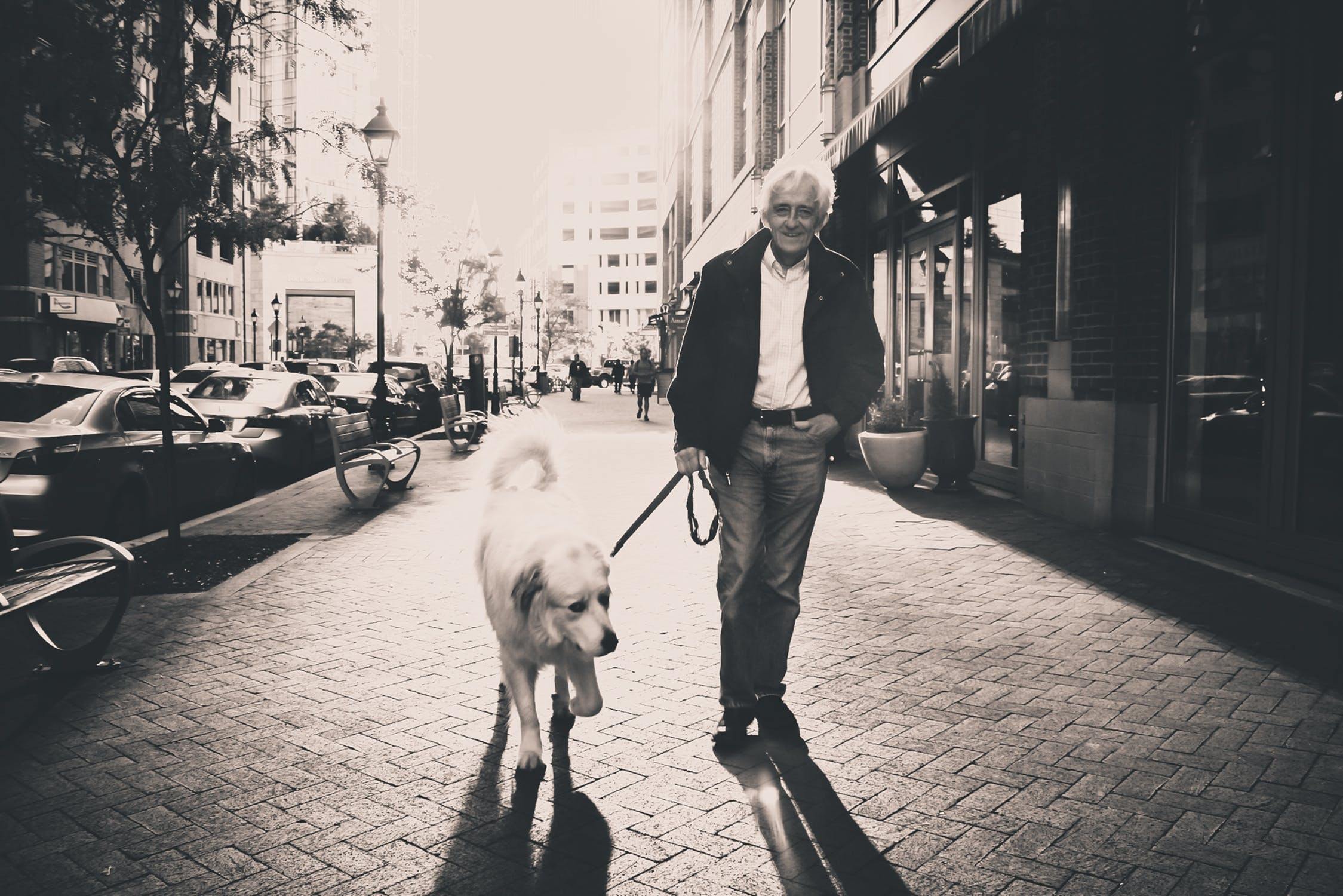A man walking his dog as he learns about the city after leaving Japan with family.