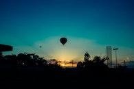 sky, sunset, bird