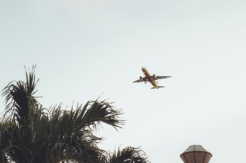 Low Angel Photo of Flying Air Liner