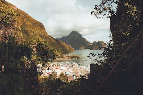 Ilmainen kuvapankkikuva tunnisteilla joki, kallio, maisema, puu