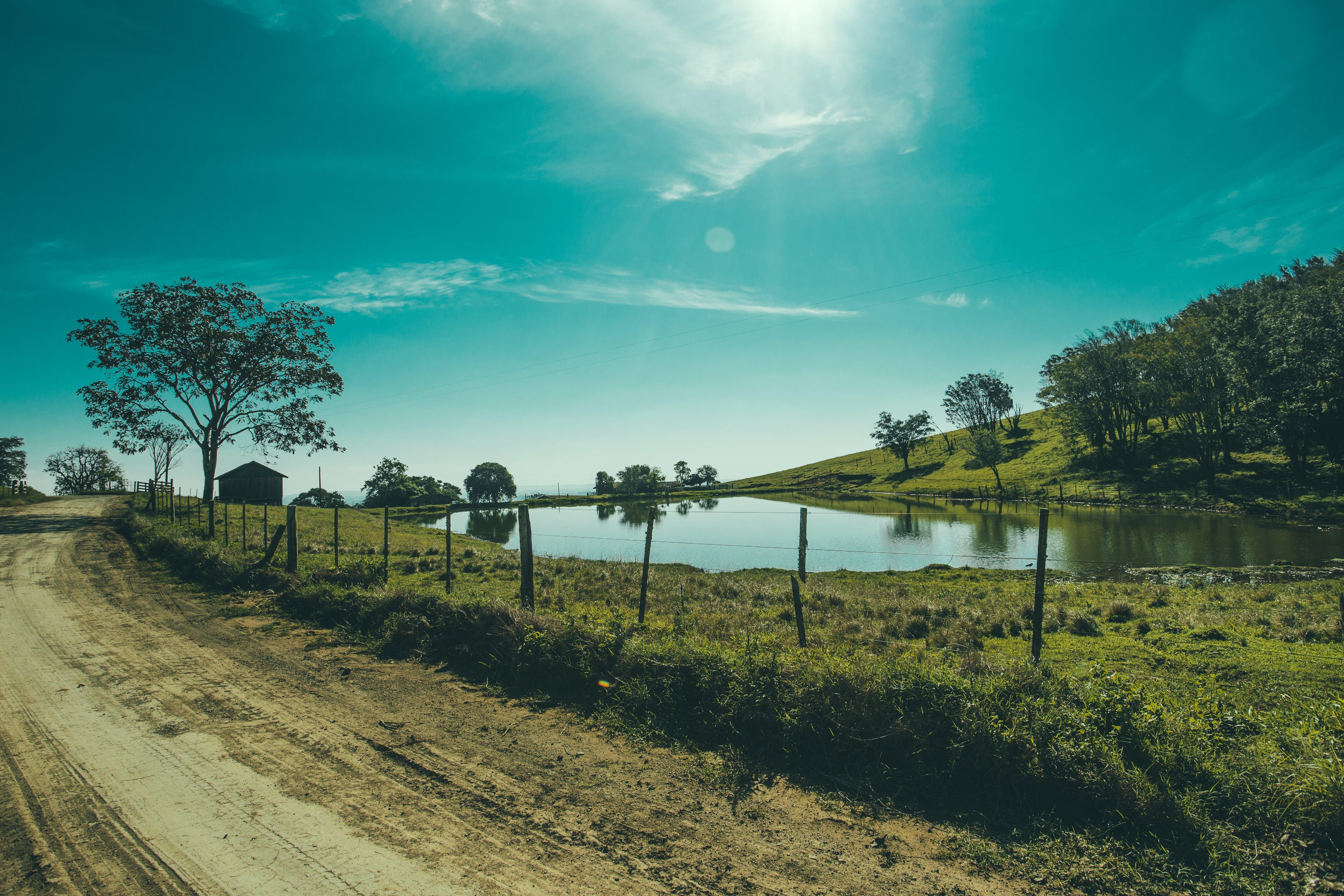 Základová fotografie zdarma na téma krajina, obloha, příroda, rybník