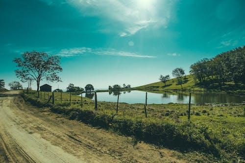 Photos gratuites de arbres, bassin, chemin de terre, ciel