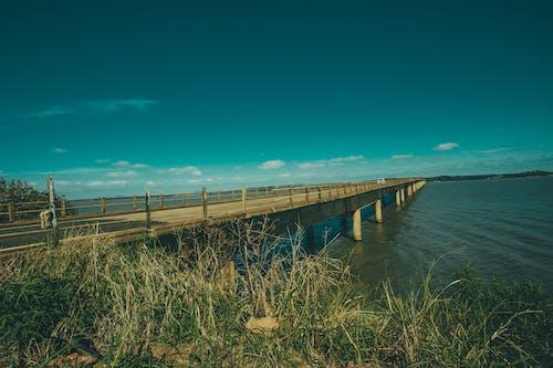 シースケープ, ビーチ, ブリッジ, 交通機関の無料の写真素材