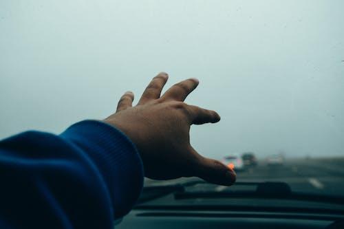 Photo of People Hand