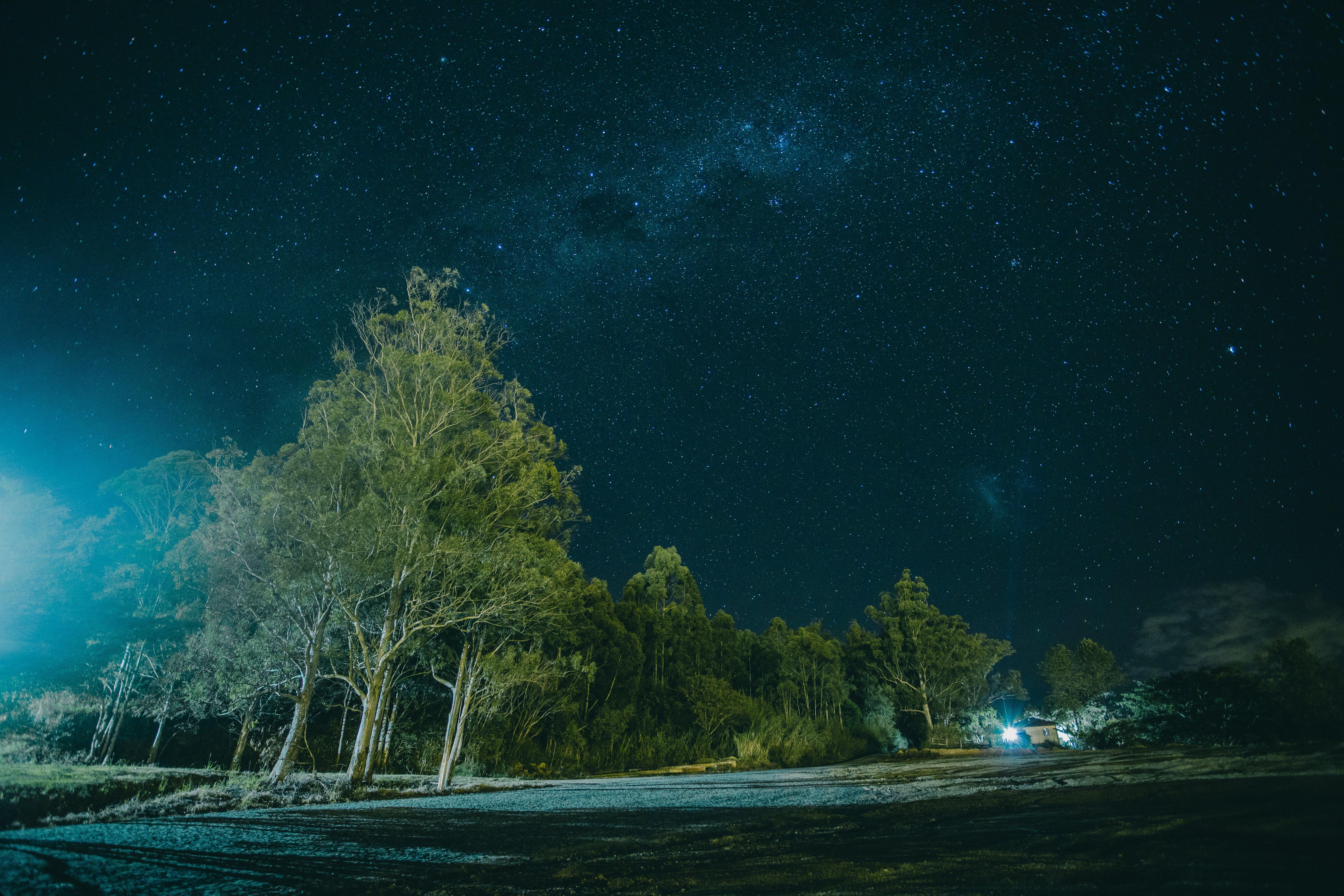 Бесплатное стоковое фото с galaxy, вечер, деревья, живописный