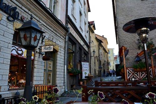 Free stock photo of old town, tallinn