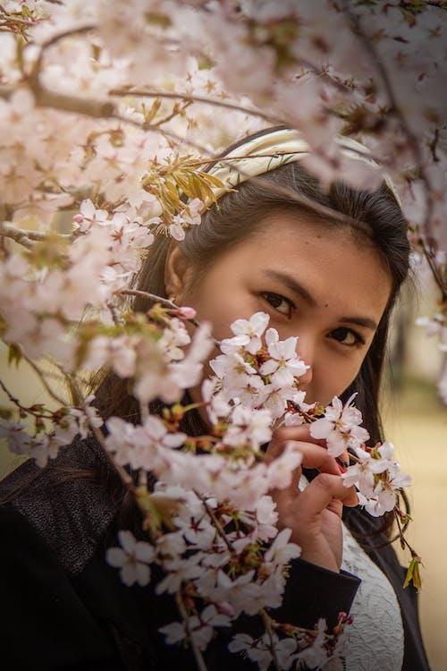 春天 的 免费素材照片
