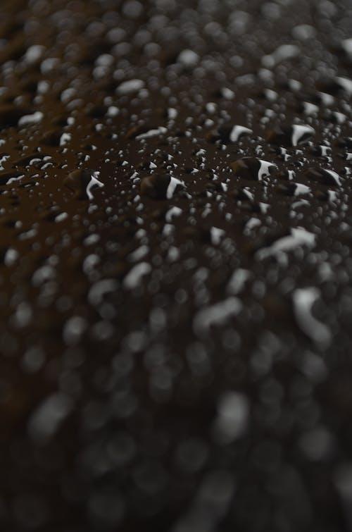 Foto profissional grátis de abstrac, água, conhecimento, copo